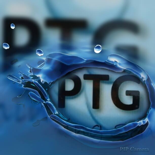 PTG Cleaning Services