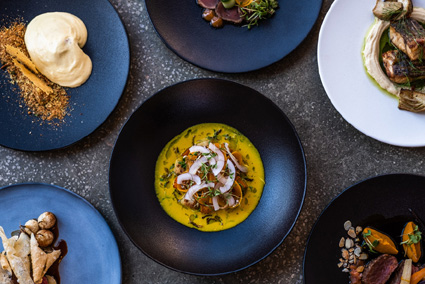 TOKARA autumn dishes